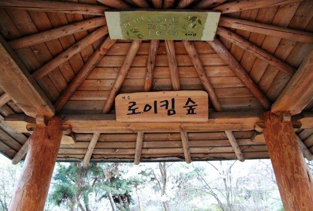 '로이킴숲'에는 벚꽃이 만개했고, 로이킴에게 편지를 쓸 수 있는 우체통, '로이킴 숲' 간판을 단 정자가 설치돼