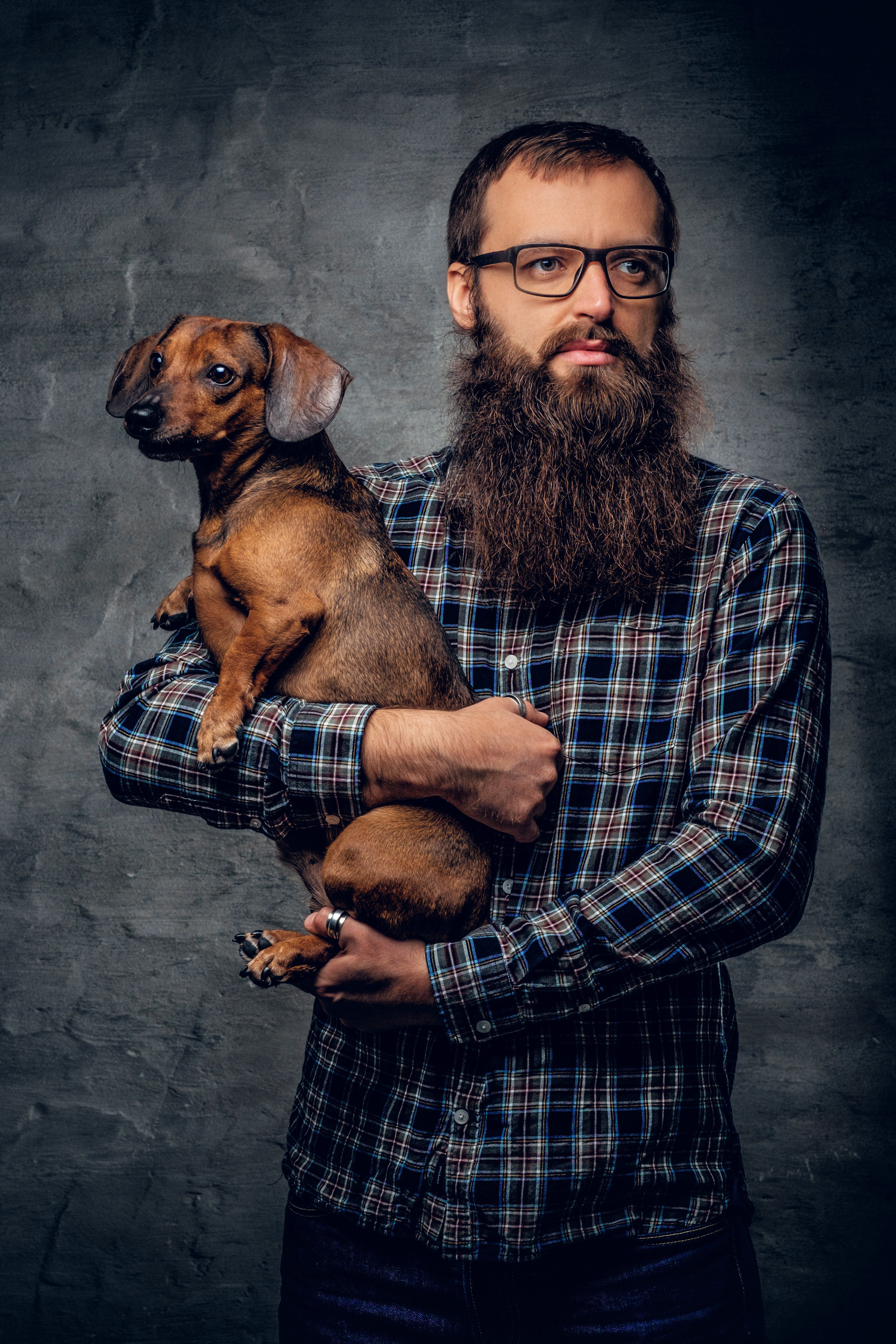 Bearded hipster male in eyeglasses dressed in a plaid shirt holds in arms cute littlebadger dog.