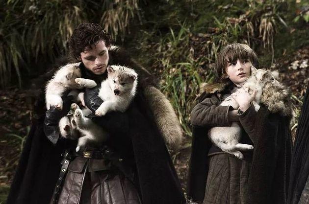 Game of Thrones: Τα ονόματα των ανταρόλυκων αποκαλύπτουν το μέλλον των αδερφών