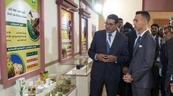 Le prince Moulay El Hassan préside à Meknès l'ouverture de la 14ème édition du