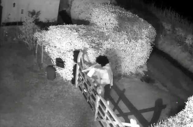 CCTV shows the perpetrator scaling a
