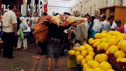 Depuis 2015, le marché de gros de Bir El Kassaa sans médecin vétérinaire pour contrôler la qualité de la