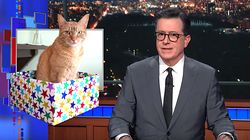 Stephen Colbert Confirms Something Really Insulting About