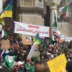 9e vendredi de manifestation: détermination des Algériens et refus des solutions de