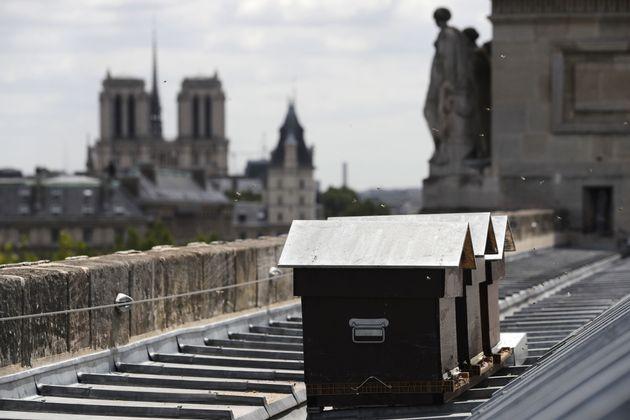 2017년 찍은 성당 지붕 양봉통