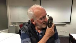 Αυστραλία: Αστεγος ξανάσμιξε με τον αρουραίο του με τη βοήθεια της