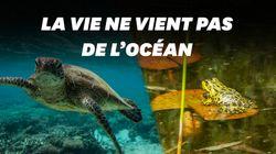 La vie serait née, non pas dans l'océan, mais dans une