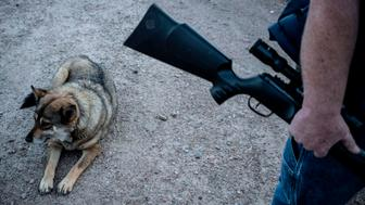 Jeff Allen, 56, cowowner of a property on the US-Mexico border and a member of Constitutional Patriots New Mexico Border Ops Team militia stands with his dog near the border in Sunland Park, New Mexico on March 20, 2019. - The militia members say they will patrol the US-Mexico border near Mt. Christo Rey, 'Until the wall is built.' In recent months, thousands of Central Americans have arrived in Mexico in several caravans in the hope of finding a better life in the United States. US President Donald Trump has branded such migrants a threat to national security, demanding billions of dollars from Congress to build a wall on the southern US border. (Photo by Paul Ratje / AFP)        (Photo credit should read PAUL RATJE/AFP/Getty Images)