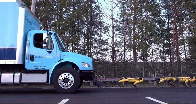 이 개들은 12톤 트럭을