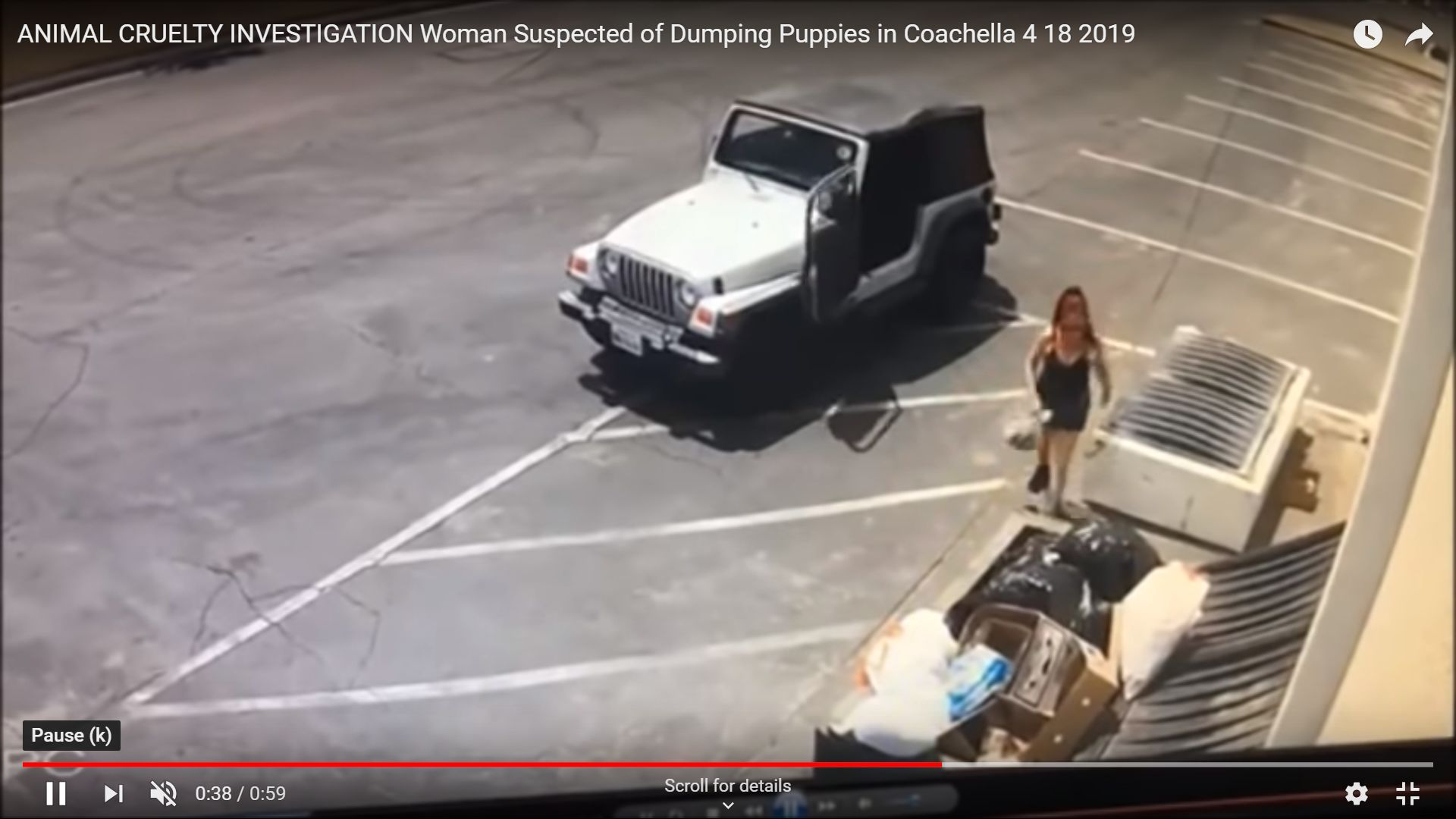 A woman is wanted by authorities for allegedly dumping a bag of puppies by a dumpster