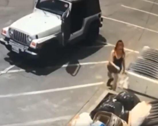 Γυναίκα κατεγράφη σε βίντεο να πετά επτά κουτάβια στα