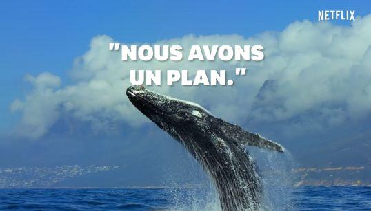 """Le message plein d'espoir du narrateur de """"Notre Planète"""" pour la journée de la"""
