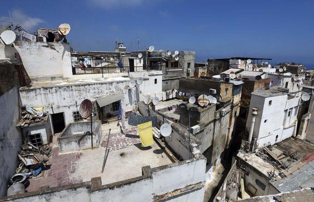 L'architecte Halim Faidi :