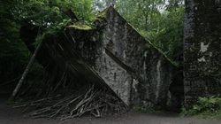 Il bunker di Hitler un'opera