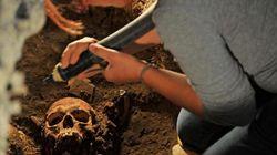 A Firenze trovati i resti della Gioconda?