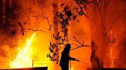 Dentro le fiamme: