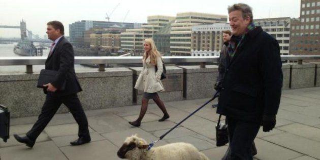 Stephen Fry, attore comico di Wilde  porta a spasso 'Grace' per London