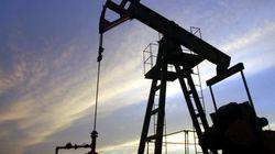 Mille trivelle in Italia, ma a chi conviene al nuova corsa al petrolio? Oggi
