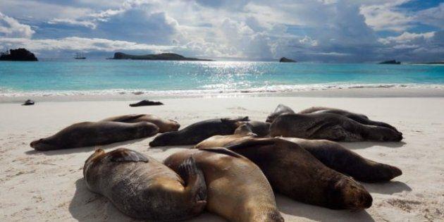 Spiagge da sogno, dalle Hawaii alle Galápagos: la classifica di Travel + Leisure