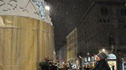 Il sindaco Pizzarotti rilancia l'albero di Natale che va a pedali e non consuma