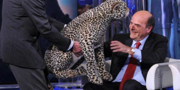 Elezioni 2013: l'ironia di Twitter su Pier Luigi Bersani e il motto