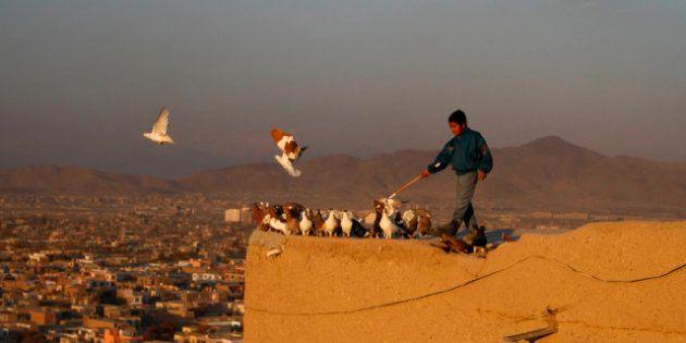 Afghanistan, 200 bambini nel carcere Usa di Bagram: la denuncia di Human Rights