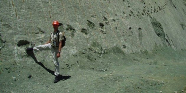 Bolivia, il muro dei dinosauri: 5000 impronte di oltre 462 specie vissute 68 milioni di anni fa