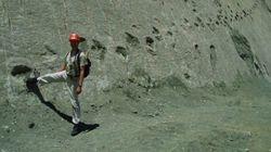 Il muro dove hanno danzato 462 specie di dinosauri. Le impronte giganti su una parete boliviana