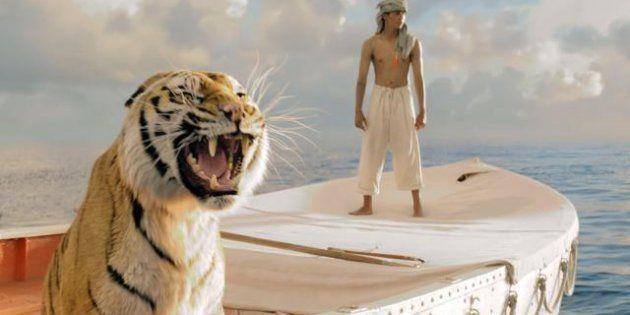 Tigri, in India ne sono rimaste meno di duemila. Per salvarle non basta un film sull'amicizia con un