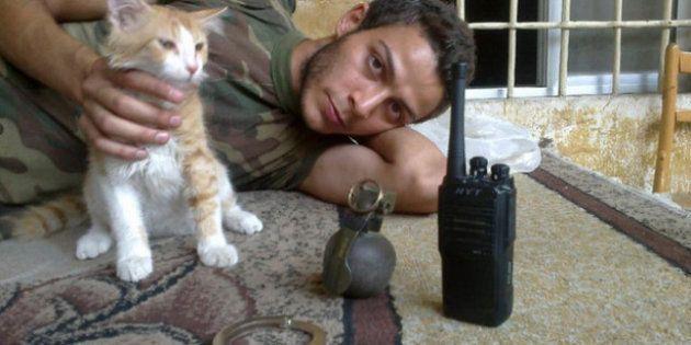 I ribelli siriani con i loro gatti
