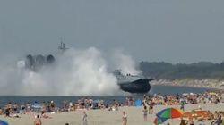 Guardate cosa gira per le spiagge del Mar