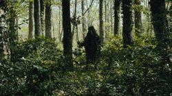 Rivivono i romiti: uomini albero della