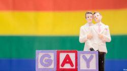 Nozze gay: con il sì di Parigi, i fiori d'arancio diventano arcobaleno in 14