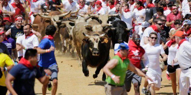 Corsa con i tori. Sembra Pamplona ma sono gli Stati Uniti