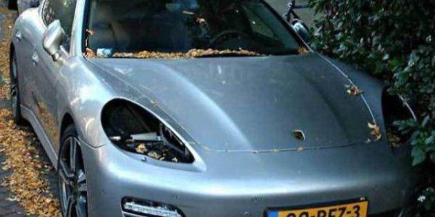 Olanda, i fari delle Porshe vanno a ruba: i ladri li usano come lampade per coltivare la marijuana (VIDEO,