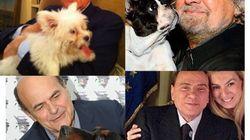 Politico che vai, cane che trovi