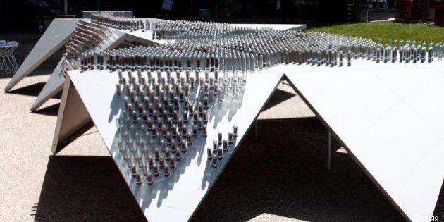 L'atlante del seme: un tavolo di 2000 provette racconta la storia della natura