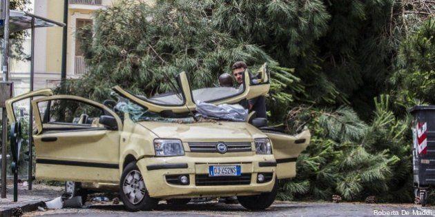 Cristina Alongi muore: a Napoli un albero le cade sull'auto