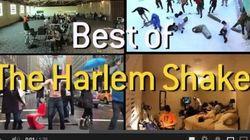 Fenomeno Harlem Shake: la pazza danza conquista il web