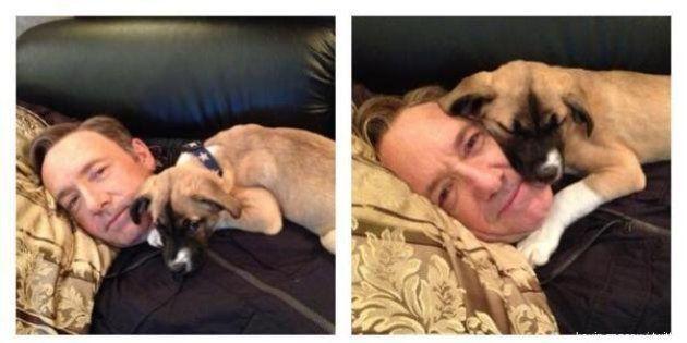 Kevin Spacey chiama il suo nuovo cane Boston, per le vittime della maratona