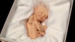Ora il feto si stampa in