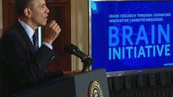 'Brain': il piano Obama per mappare il cervello