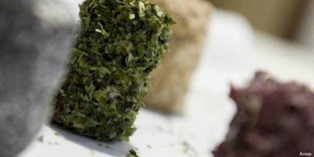 Trofeo di alta cucina per celiaci: gli chef si sfidano a colpi di piatti glutenfree
