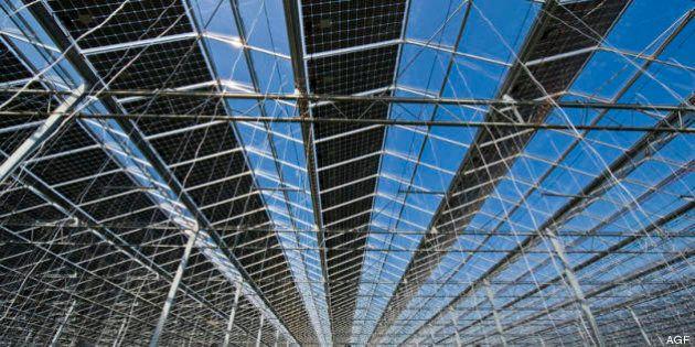 Pannelli solari, Maurizia Palummo: