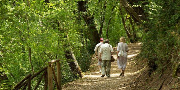 Per il Papa ad Assisi pronto anche il bosco di San Francesco restaurato dal Fai