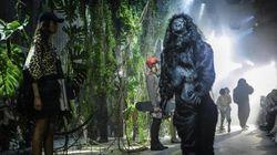 C'è un gorilla in passerella. Le sfilate di Moncler e Miu Miu a Parigi