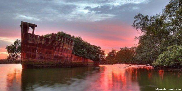 The Floating Forest, il bosco getta l'ancora: la nave da guerra ora è una foresta galleggiante
