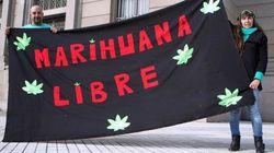 Uruguay, legalizzazione marijuana: primo sì della Camera. Si attende il via libera al Senato