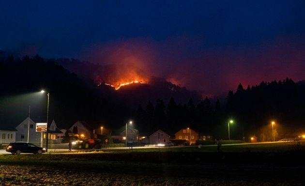 «Κύμα» δασικών πυρκαγιών στη βόρεια