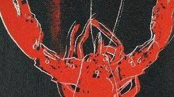 Anche le aragoste soffrono
